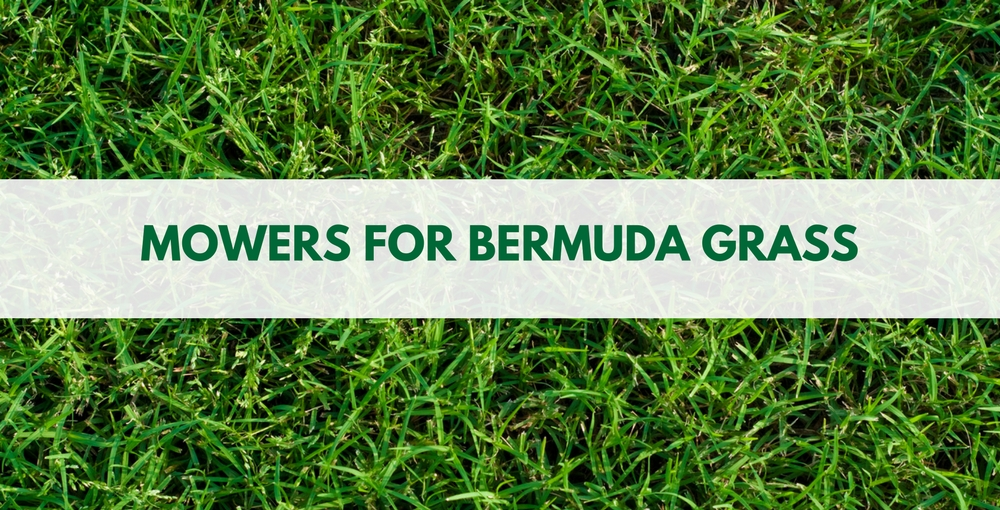 Best Lawn Mower for Bermuda Grass Review 2019 | Use a Reel Mower