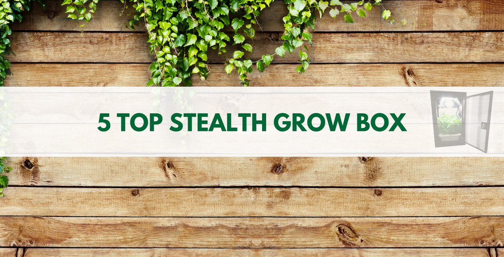 Best Stealth Grow Box 2018 Review Stealth Grow Boxes For
